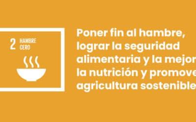 Haurralde Fundazioa y la seguridad alimentaria: ODS2